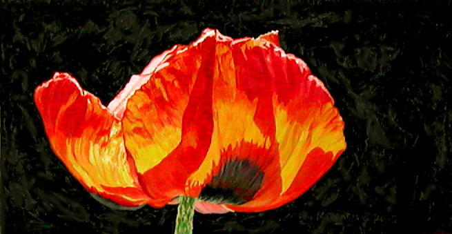 Poppy, painting by Mary Baker