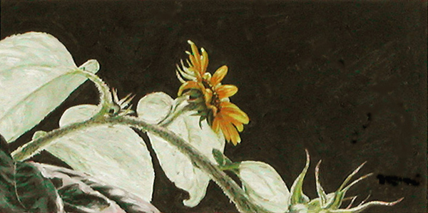 Sun Flower 3, painting by Mary Baker