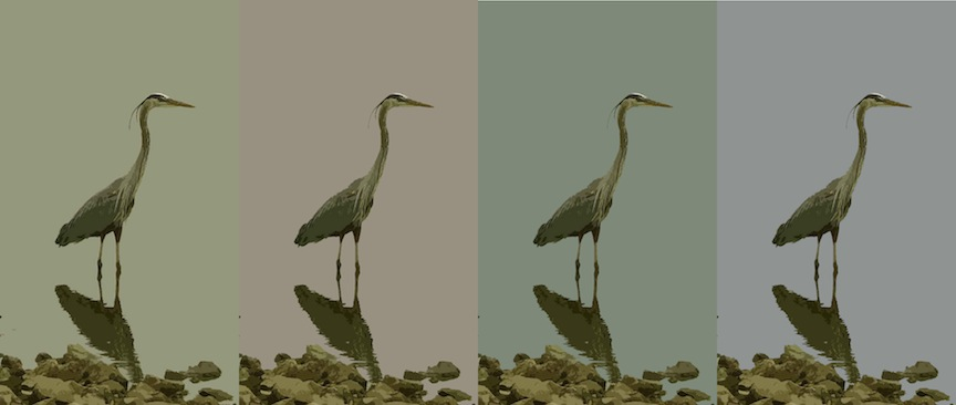 4 Herons, Digital Image, birds