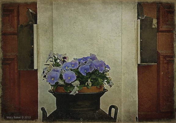 Red Doors and Pansies © Mary Baker, digital image