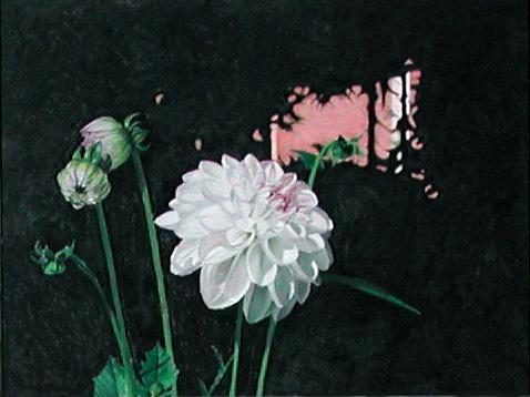 Dahlia, painting by Mary Baker