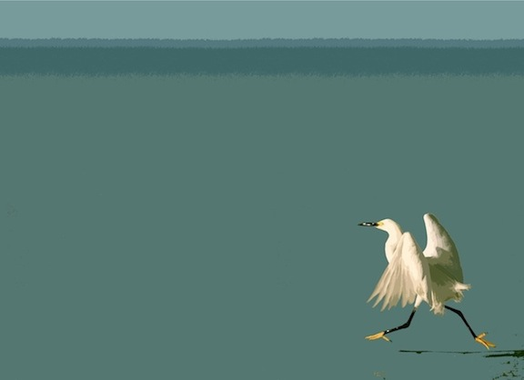 Running Bird, digital image