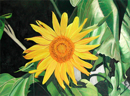 Sunflower 1, painting by Mary Baker