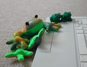 The frogs pow-wow around my computer.