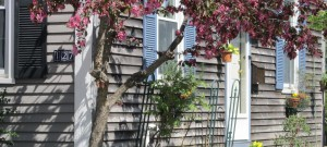 Spring in Newburyport's South End