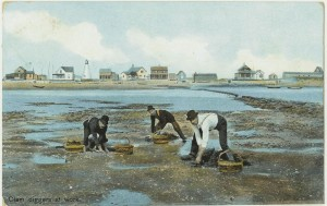 Newburyport Postcard, Clam Diggers at Work