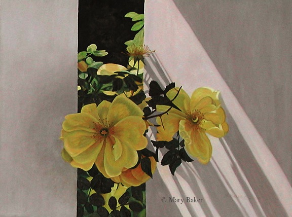 Yellow Roses © Mary Baker