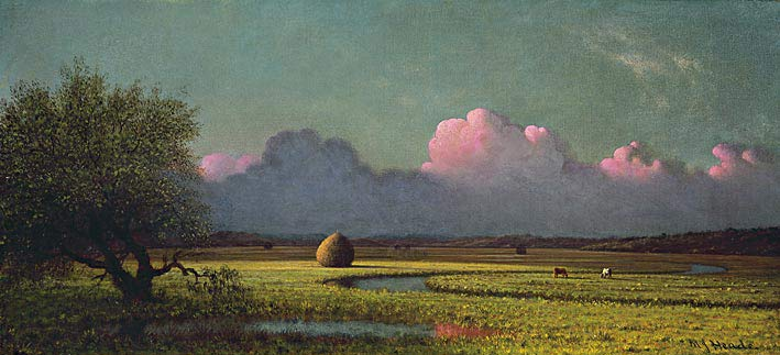 Sunlight and Shadow: The Newbury Marshes (c. 1871-1875), Martin Johnson Heade