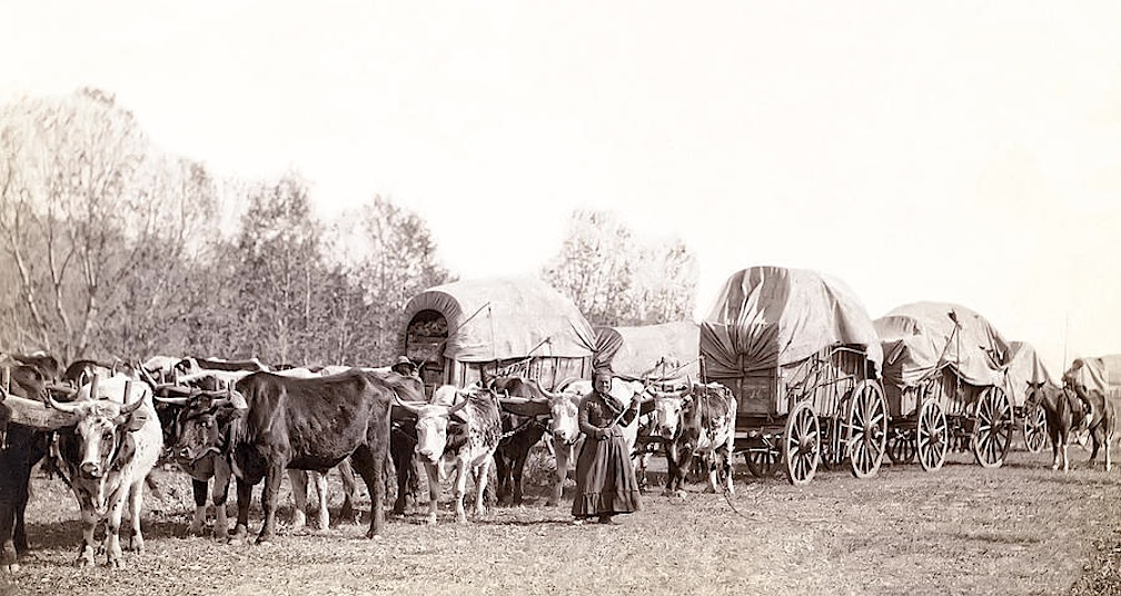 Wagon Train on the Emigrant Trail